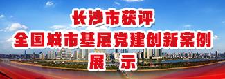 长沙市获评全国城市基层党建创新案例展示